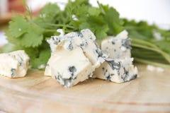 与蓝色模子的乳酪 库存照片