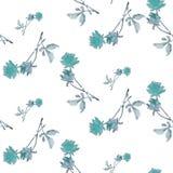 与蓝色玫瑰和叶子的水彩无缝的样式在白色背景 库存图片