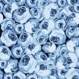 与蓝色玫瑰的被绘的花无缝的样式 库存图片