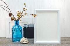 与蓝色玻璃花瓶的空的照片在木ba的框架和贝壳 库存图片