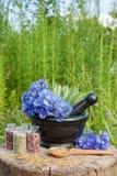 与蓝色矢车菊和贤哲,草药的灰浆 免版税库存照片