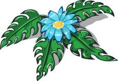 与蓝色花和有穴的叶子monstera的意想不到的灌木 免版税库存图片