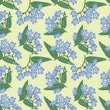 与蓝色花的无缝的背景 库存图片