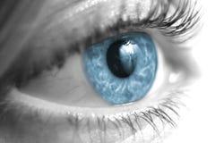 与蓝色虹膜的黑白女性眼睛特写镜头 免版税库存照片