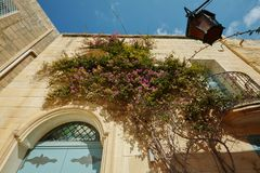 与蓝色门的美丽如画的门面和五颜六色的紫色九重葛开花在古老被加强的市姆迪纳里面,马耳他 malt. 免版税库存照片