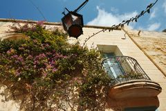 与蓝色门的美丽如画的门面和五颜六色的紫色九重葛开花在古老被加强的市姆迪纳里面,马耳他 malt. 免版税库存图片
