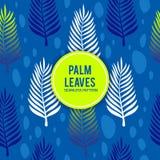 与蓝色颜色无缝的样式的棕榈叶 库存图片