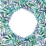 与蓝色,紫罗兰和绿色叶子的水彩小插图 库存照片