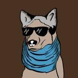 与蓝色围巾的行家狗 免版税库存照片