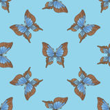 与蓝色蝴蝶的无缝的样式 库存图片