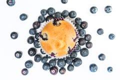 与蓝莓和杏子顶上的射击的松饼 库存图片