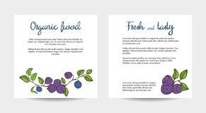 与蓝莓设计的两张卡片 库存照片