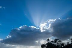 与蓬松白色云彩和阳光的蓝天背景 免版税库存图片
