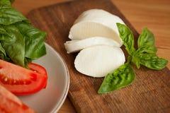 与蓬蒿叶子的蕃茄和无盐干酪切片 库存照片