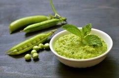 与蓬蒿和绿豆的Pesto调味汁 库存照片