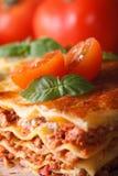 与蓬蒿和蕃茄宏观垂直的鲜美烤宽面条 图库摄影