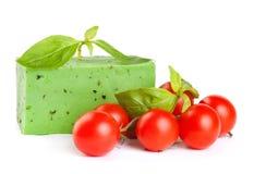 与蓬蒿和蕃茄的绿色干酪 库存图片