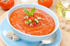与蓬蒿的冷的蕃茄汤在碗的gazpacho和油煎方型小面包片 库存图片