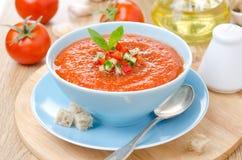 与蓬蒿的冷的蕃茄汤在碗的gazpacho和油煎方型小面包片 免版税库存照片