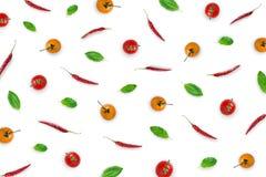 与蓬蒿的原材料离开,辣椒,在白色backgroun的蕃茄 免版税库存图片