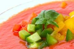 与蓬蒿的可口冷的红色gazpacho汤离开 图库摄影