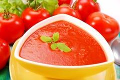 与蓬蒿的蕃茄奶油色汤 免版税图库摄影