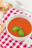 与蓬蒿的蕃茄汤 免版税库存图片