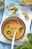 与蓬蒿的蕃茄汤 库存图片