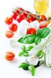 与蓬蒿,蕃茄和芳香抚人的无盐干酪球, caprese 免版税库存照片