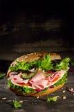 与蔬菜的三明治 图库摄影