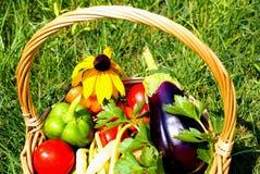 与蔬菜的篮子 免版税库存图片