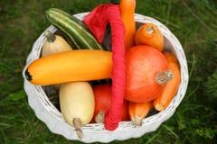 与蔬菜的篮子 免版税图库摄影