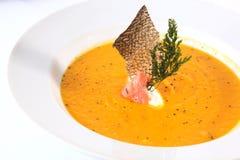 与蔬菜的鱼汤 库存图片
