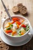 与蔬菜的鸡汤 免版税库存图片
