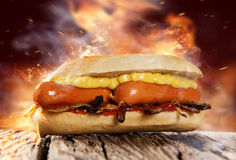 与蕃茄辣调味汁、芥末和葱的热狗 免版税库存图片