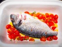 与蕃茄anl橄榄油的海鲷 库存图片
