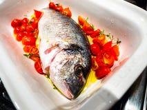与蕃茄anl橄榄油的海鲷 免版税库存图片