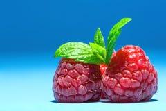 与薄荷叶小树枝的莓在顶面宏观纹理的在蓝色背景 免版税图库摄影
