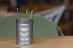 与薄荷叶的一mojito在罐头 库存图片