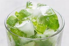 与薄荷叶的自创冰块里面在玻璃、冰柠檬水的和鸡尾酒,水平,特写镜头 库存图片