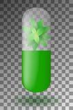 与薄荷叶的草本胶囊里面在透明背景 库存例证