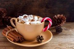 与薄荷藤茎的热巧克力 免版税库存图片