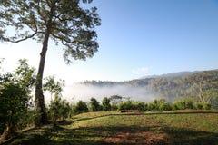 与薄雾的小山在早晨天空 免版税库存照片