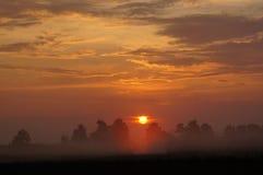 与薄雾的日出领域。 免版税库存照片