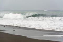 与薄雾的海滩天 免版税库存图片