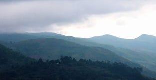 与薄雾的美好的小山hillses在kodaikanal附近游览地方 免版税库存图片