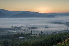 与薄雾的Pai泰国风景在日出的谷 库存照片