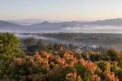 与薄雾的Pai泰国风景在日出的谷 免版税库存照片