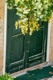 与藤植物和葡萄的绿色木房子门 图库摄影