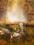 与藤的岩石在森林里 免版税库存图片